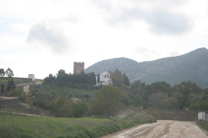 Puente Nazari Ortegicar
